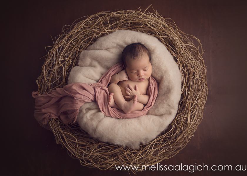 Melissa Alagich Photography, Adelaide Newborn baby photographer - love